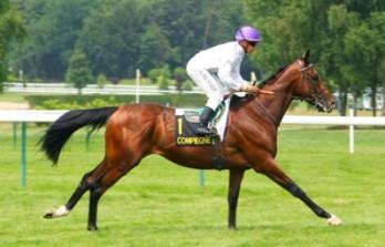 Top Jockey Benoist Chooses Prix De l'Arc Ride&h=223&w=348&zc=1
