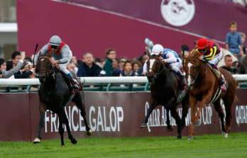 Treve Officially Retired From Racing&h=223&w=348&zc=1