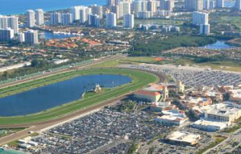 Mohaymen Opens As Florida Derby Favorite&h=223&w=348&zc=1