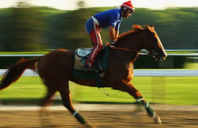 Horse Racing's Best On The Move
