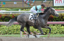Gorgeous Bird Wins Don Bernhardt Stakes