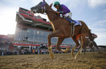 California Chrome Confirmed For San Diego Handicap
