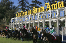 Betting Handle Down At Santa Anita