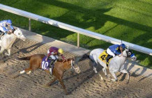 Cupid Wins Indiana Derby