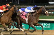Effinex Defends Suburban Handicap Title