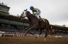 Laoban A Longshot Winner In Jim Dandy Stakes