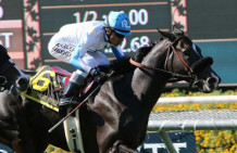 Midnight Storm Wins Eddie Read Stakes at Del Mar