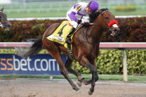 Nyquist/Exaggerator Round Two On Tap For Haskell&h=138&w=208&zc=1
