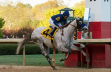 Cupid, Mo Tom Among Entries In West Virginia Derby