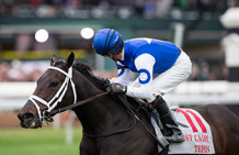 Tepin Looks Like Horse To Beat In Woodbine Mile