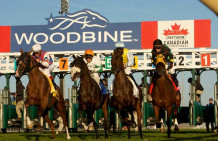 Tepin Set For Woodbine Mile